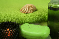 Green spa Royalty Free Stock Images