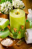 Green spa still life Royalty Free Stock Photography