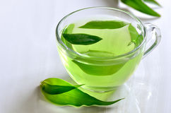 Green spa tea Stock Image