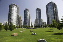 Green space with in the dowtown highrise condos Royalty Free Stock Photography