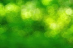 Green Sparkle Background Royalty Free Stock Photos