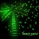 Green sparkling palm tree Stock Photos