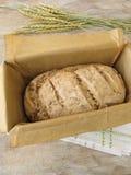 Green spelt bread in baking form Royalty Free Stock Photos