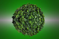 Green sphere from small leaf. On water surface Stock Photos