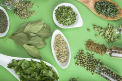 Green spices on a green background Royalty Free Stock Image