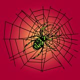 Green spider in the web. A green spider is sitting in the web. This file is also available as Illustrator-File Stock Image