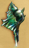 Green spiky sea shell sketch. Hand drawn colored pencil sketch of a shiny green sea shell with spikes Royalty Free Stock Photography