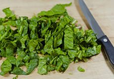 Green Spinach Royalty Free Stock Photos