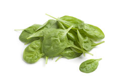 Green spinach leaves Royalty Free Stock Photography