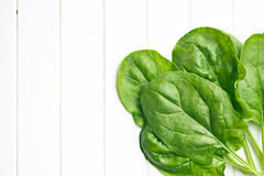 Green spinach leaves Royalty Free Stock Images