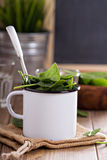 Green spinach leaves in a mug Stock Photography