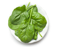 Green spinach leaves on plate Stock Photo