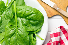 Green spinach leaves on plate Royalty Free Stock Photo