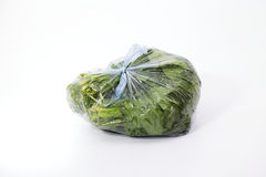 Green spinach Royalty Free Stock Images