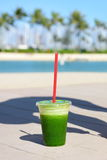 Green spinach vegetable smoothie healthy lifestyle royalty free stock image