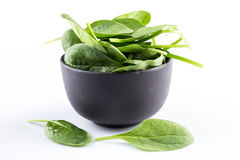 Green spinach on a white background Royalty Free Stock Photo