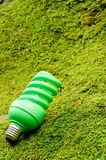 Green spiral light bulb Stock Image