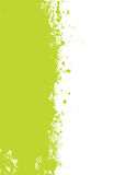 Green splat grunge Stock Photos