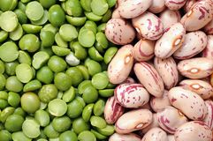 Green split pea and roman bean Royalty Free Stock Images
