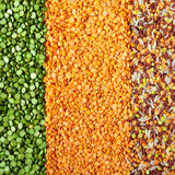 Green Split Peas, Lentils And Rice Royalty Free Stock Images