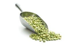 Green split peas in metal scoop. Stock Images