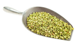 Green split peas on white background. Green split peas on a metal transfer scoop isolated on white Royalty Free Stock Photos