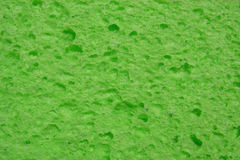 Green sponge Royalty Free Stock Photos