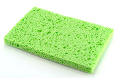 Green sponge. Stock Photos