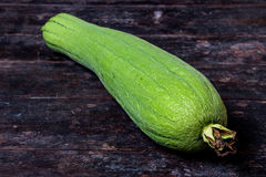 Green Sponge Gourd Royalty Free Stock Photography
