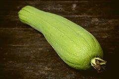 Green Sponge Gourd Stock Image