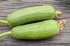 Green sponge gourd on wooden floor. Luffa cylindrica royalty free stock image
