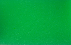 Green sponge texture Stock Image
