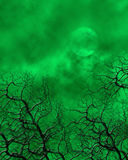 Green Spooky Background Royalty Free Stock Images