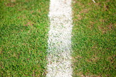 Green sports field Stock Photography