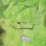Green sprayed surface on an old flaky wall royalty free stock photo