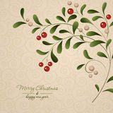 Green sprig with red berries  on vintage. Background. Vector illustration Stock Photography