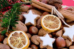 Green sprig and star-shaped cinnamon biscuit Royalty Free Stock Photo