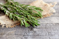 Green sprigs of fresh rosemary on the burlap and old wood background with empty place for text. Fragrant plant used in cooking. Plant used in cooking, medicine royalty free stock photo