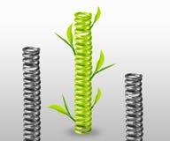 Green spring Royalty Free Stock Image