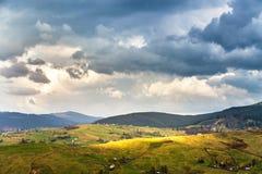 Green spring alpine scene. Spring rain and storm. Stock Photos