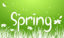 vector green spring background Royalty Free Stock Images