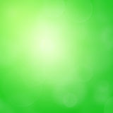 Green spring background Stock Photography