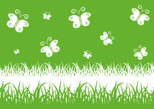 Green spring background with butterflies Royalty Free Stock Photos