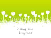 Green spring background with copy space Stock Photo