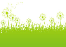 Green spring background Stock Photos