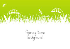 Green spring background Royalty Free Stock Image