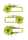 Green spring banners. With floral design element Royalty Free Stock Photo