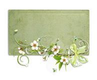 Green spring frame with apple tree flowers Royalty Free Stock Photography