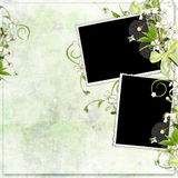 Green spring frame with cherry flowers Stock Photos