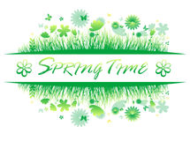 Green spring grass with flower and butterflies Isolated On White Background Stock Photo